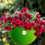 Kraft Seeds Hanging Planter Euro Elegance Round Solid Look and Feel Pots for Home & Balcony Garden 17.5cm Diameter Green