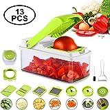 Hyden Gemüseschneider, Kartoffelschneider, Gemüsehobel, Küchenhobel, Spiralschneider, Vegetable Slicer, 13 in 1 Set aus Edelstahl, BPA Frei