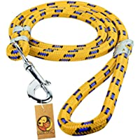Foodie Puppies Strong Comfortable Nylon Training Leash for Puppies & Cat, 9mm (Color May Vary)