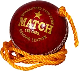 PSE Priya Sports Unisex Leather Practice Cricket Ball Red