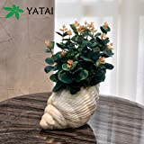 YATAI Conch Vase Flower Vase Siren Planter Home Decor Vase and Table Centerpieces Vase - Ideal Gifts for Friends and Family,