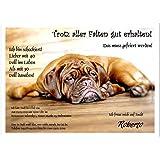 Ausgefallene Einladungskarte zum Geburtstag Fauler Hund auf Fußboden, 20 Karten - 17 x 12 cm oder DIN A5