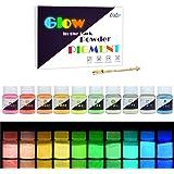 Pigmento di Resina Epossidica Fluorescente - 10 x 25g Polvere Fluorescente Resina per Resin, Slime, Chiodo - Glow in The Dark