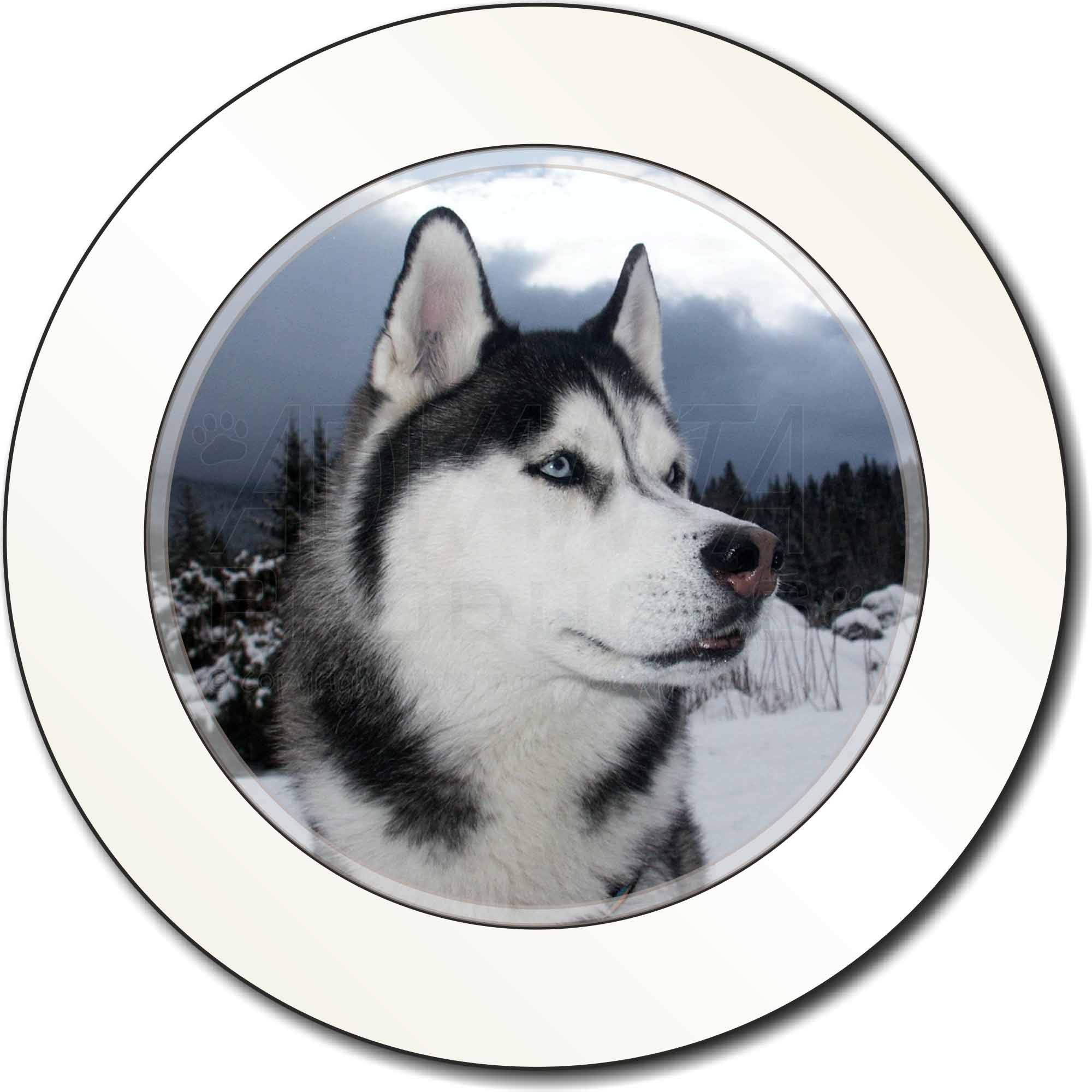 Siberian Husky Car Tax Disc Holder New Animal, Ref:AD-H52T