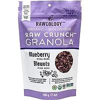 Rawcology | Granola croccante ai mirtilli biologico | Senza zuccheri aggiunti, senza glutine, chetogenico, paleo, raw