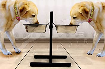 Pets Empire Stainless Steel Double Bowl Stand for Dog, Large