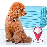 Futurekart 50-in-1 Pet Training and Puppy Pads Regular (Blue, 60x45 cm)