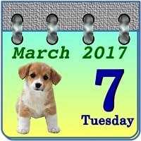 Calendar My Puppy