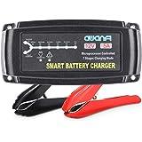 AWANFI Cargador Batería Coche, 12V 5A Automático Inteligente Mantenedor Bateria Coche y Protecciones Múltiples para Baterías