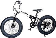 Aster Folding Fat Bike - White Black 20 Inch (Multi Color)