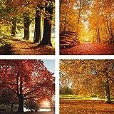 Artland Leinwand-Bild fertig aufgespannt auf Holzfaserplatte mit Motiv Herbstfarben. Schöne Herbstlandschaft Herbst im Park. Herbst/Herbstbaum. Botanik Bäume Laubbaum Fotografie Ocker C9AT