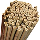 Elixir Gardens Strong Heavy Duty Professional Bamboo Plant Support Garden Canes   2ft x 10