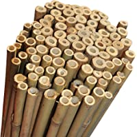 Elixir Gardens 2Ft,3Ft,4Ft,5Ft,6Ft,7Ft,8FT,10Ft Strong Heavy Duty Professional Bamboo Plant Support Garden Canes