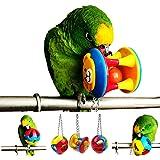 ECOOLBUY 3 pièces mignon animal de compagnie oiseau morsure jouet perroquet à mâcher balle jouets balançoire Cage cockatiel p