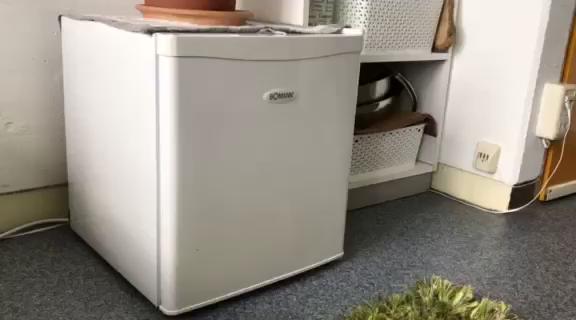 Bomann Kühlschrank Zu Warm : Amazon.de:kundenrezensionen: bomann kb 389 mini kühlschrank a 51