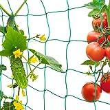FORMIZON Filet de Jardin, Filet à Plantes Grimpantes, Filet à Ramer pour Récolte de Concombres, Légume, Tomates et Autres Lég