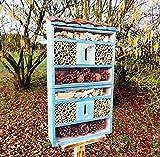 Nistkästen blau hellblau als insektenhotel, mit Naturdach, FDV-HOST-OS Insekten Florfliegen Marienkäferhaus als Ergänzung zum Meisen nistkästen Meisenkasten oder zum Vogelhaus Vogelfutterhaus Futterstation für Vögel Insektenhäuschen - insektenhotels