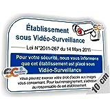 Sticker Texte de Loi Vidéo Surveillance Loi N° 2011-267 du 14 Mars 2011 - Autocollant Caméra (Largeur 10 cm/Hauteur 7 cm)