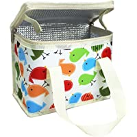 TEAMOOK Sac Repas Lunch Bag Sac à Déjeuner Sac Fraîcheur Portable Isotherme