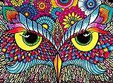 Buffalo Games Owl Eyes Jigsaw Puzzle fro...