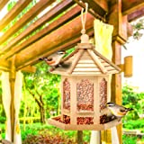 LPxdywlk Napacoh Mangeoire à Oiseaux, Hanging Bird Feeder House Seeds Container Dispenser Container Outdoor Feeding Tool Dura