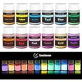 HEMOER Fluorescerende Poeder, 12 kleuren Glow in The Dark Pigment Poeder voor verf, nagels, doe-het-zelf, epoxyhars, gezicht,