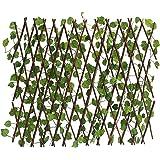 green wall / grass fens