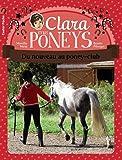 Clara et les poneys, Tome 6 : Du nouveau au poney-club