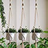 ecofynd Macrame Cotton Boho Plant Hanger [Without Pot] | Rope Flower Pot Holder for Indoor Outdoor Balcony Gardening (M21, Pa