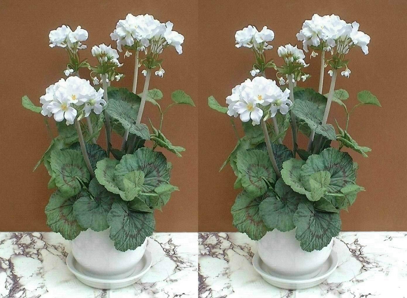 2 x Blanco Geranio Plantas (46cm) – Flores Artificiales SIN MACETAS