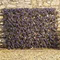 Artificial Leaf Hedge, Instant Privacy Screening Panel for Gardens, Balcony and Terraces