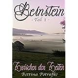 Bernstein 1: Zwischen den Zeiten
