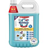 PaxClean All-in-One Extra Strong Disinfectant Surface Cleaner (Refreshing Pine) 5L