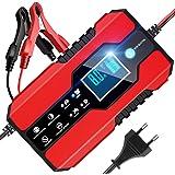 Aeg Automotive 97017 Mikroprozessor Ladegerät Ld 5 0 Ampere Für 6 Und 12 V Batterien 8 Stufig Auto