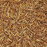 Mehlwürmer getrocknet 5 kg Beutel Premiumqualität
