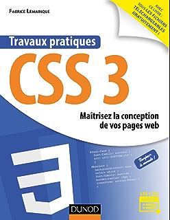 travaux pratiques css3 maitrisez la conception de vos pages web micro informatique