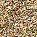 25kg Super Premium Wild Bird Seed - All Season Mix With Mealworms & Suet Pellets