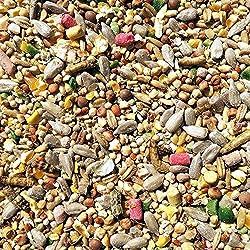 25kg Super Premium Wild Bird Seed - All Season Mix With Mealworms & Suet Pellets
