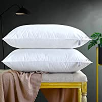 Adam Home Pillows Pack of 2 Standard Size Extra Soft Filling Hotel Quality Comfortable Bed Pillow Bounce Back Pillow…