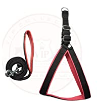 VIP Collection Pet Nylon Soft Padded Body Set-Leash & Harness (Extra Small)