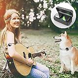PETFON Cani Animali Localizzatore GPS Nessuna tassa mensile in tempo reale Monitoraggio Anti-perso Smart Finder(Only for…