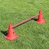 Bild: KombiKegelhürde 30 cm mit Stange 100 cm für Hürdenparcours für Agility  Hundetraining rot