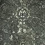 Lantern: II:Morphosis [Vinyl LP] (Vinyl)