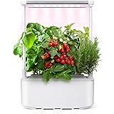 Kwasyo Giardino Intelligente, Smart Garden con 3 modalità LED Lampada da Coltivazione, Sistemi da Giardino Intelligente per C