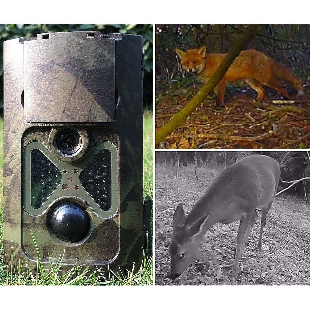 Mit dem Denver Wildkamera Modell sind hochwertige Aufnahmen möglich.