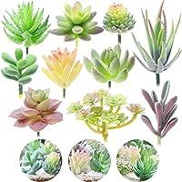 Electomania Artificial Succulent Plants, Pack of 10 - Artificial Succulents Flocking Plants, DIY Mini Fake Succulents…