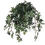 Mica decorations Hanging plants green in pot bluszcz, zielony, dł. 45 x szer. 25 x wys. 25 cm