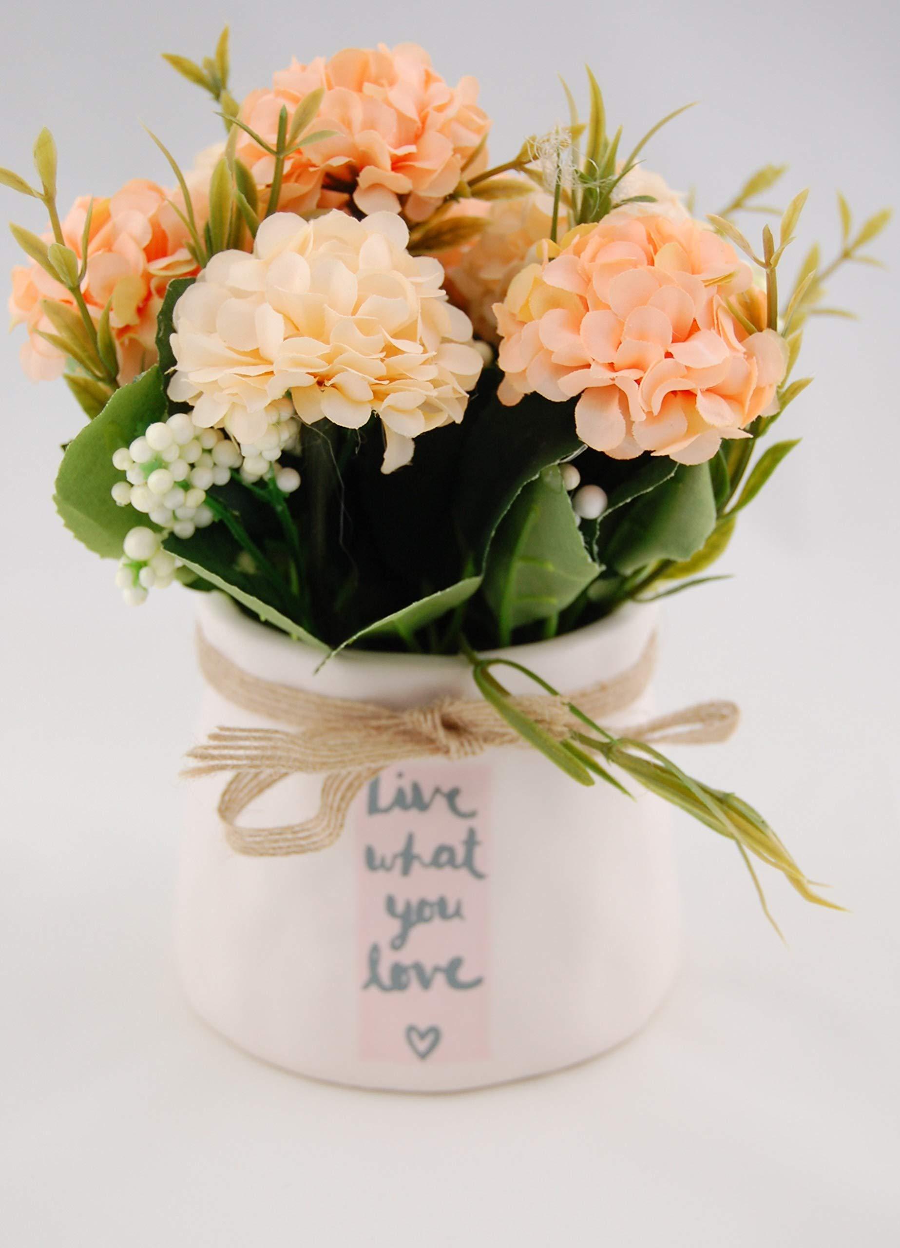 Homevibes Flores Artificiales con Maceta De Ceramica con Frase, Hortensias, Medida 9x17cm, Ideal para Decoracion del…