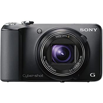 Sony Cyber-shot DSC-HX10V 18.2MP Point-and-Shoot Digital Camera (Black) with Camera Case