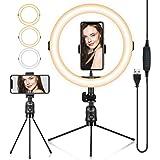 TARION Tafellichtstatief, klemstatief met 8 inch ringlicht en mobiele telefoonhouder, flexibele klemstandaard voor fotografie